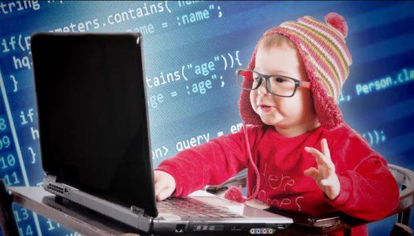 CV xin việc lập trình viên phần mềm